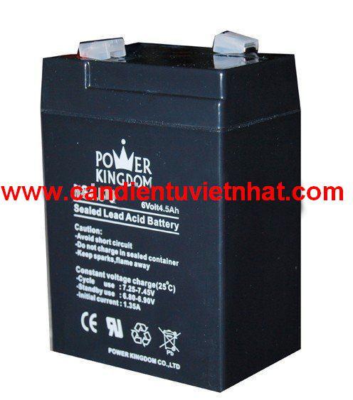 Pin cân cub, Pin can cub, Security_Battery_6V_4_5Ah_1341445638.jpg